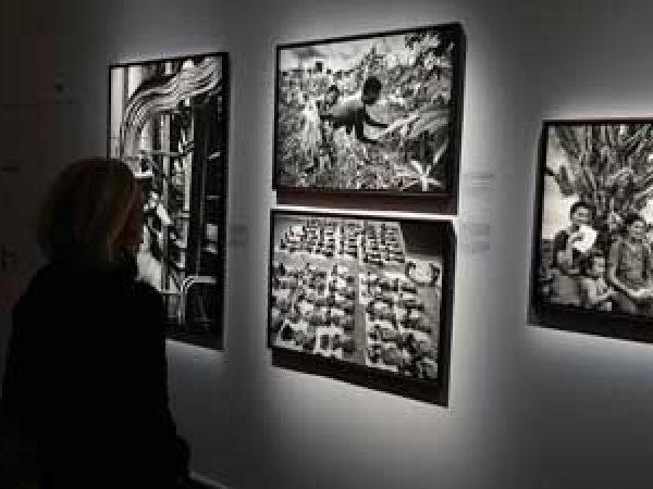 EXPOSITION «THÈME TABLEAUX MEDUSES»