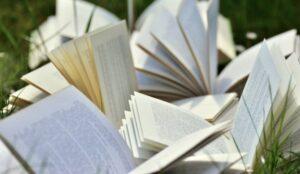 BIBLIOTHÈQUE MUNICIPALE – DISCUSSION AUTOUR DU PRIX DES VILLES SOEURS 2021